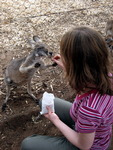 Greenough Wildlife Park_2.jpg