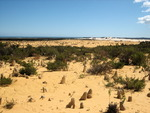 The Pinnacles, West Australia_1.jpg